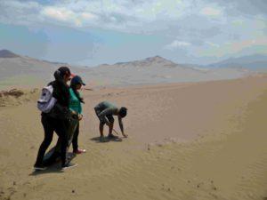 Jornada de limpieza de la ZRLA organizada por Desert Expeditions en marzo del 2018