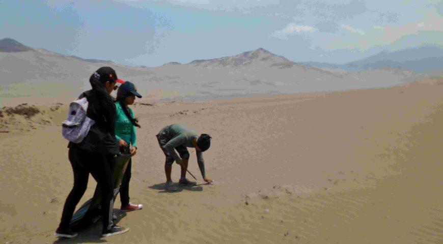 Limpieza de la Zona Reservada Lomas de Ancón por desert expeditions 2018