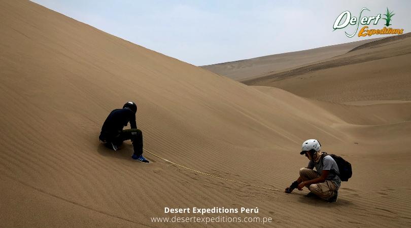 Programa de pasantía en Desert Expeditions en conservación, investigación y turismo en Ancón, turismo y academia, turismo de aventura, conservación en ancón (10)